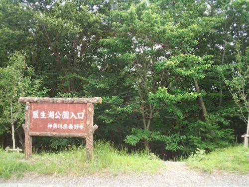 2014.8.6 震生湖に行ってきました!