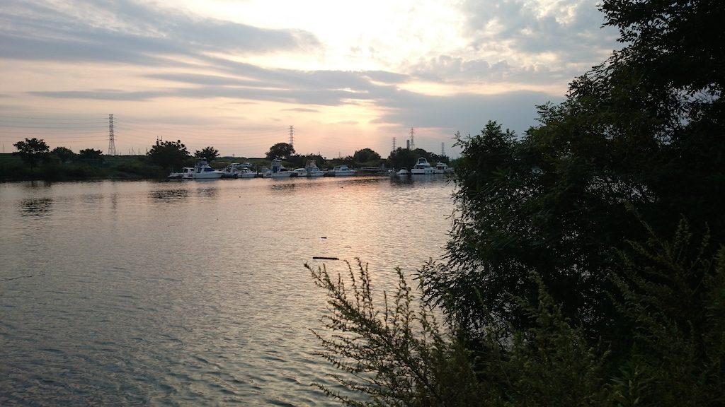 @荒川!ブラックバスを釣りに笹目橋付近に行ってきました。