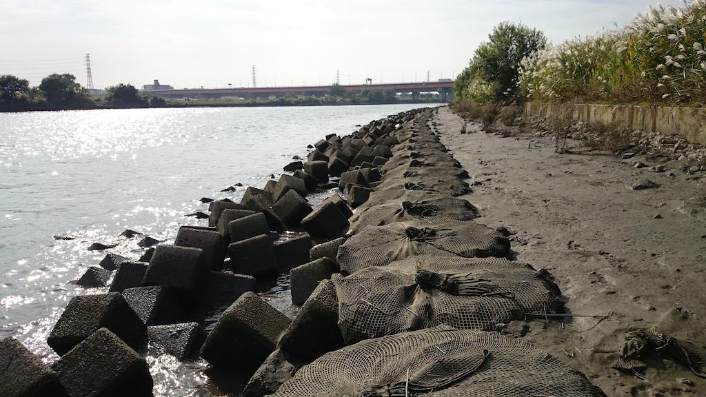 笹目橋下流側