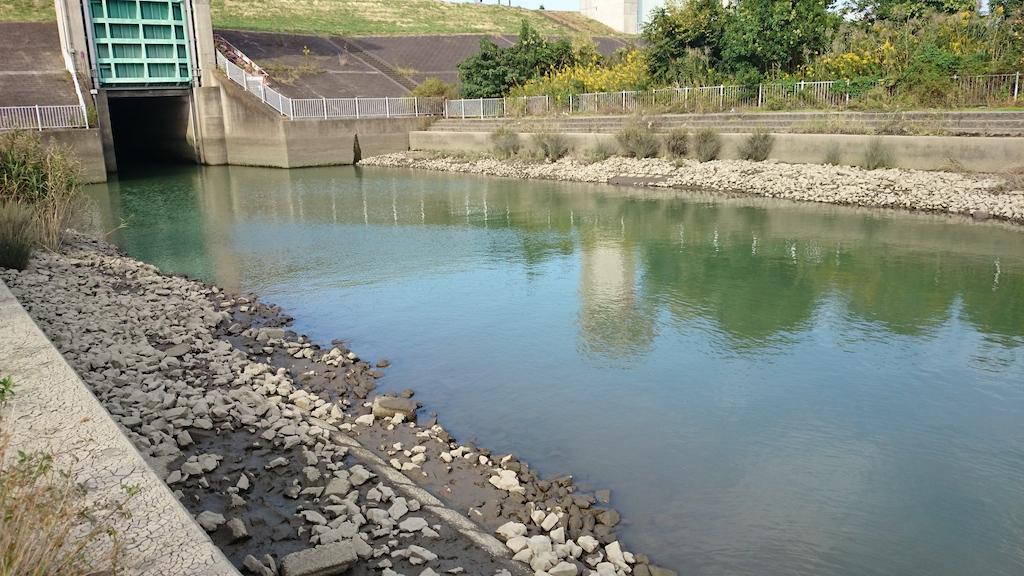 笹目橋下流側水門
