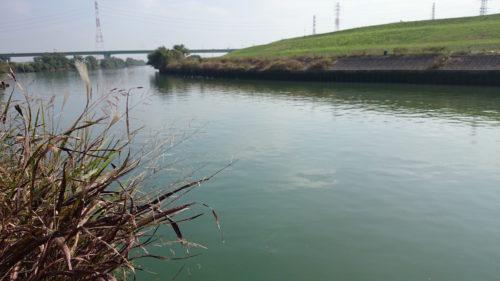 水門の左岸