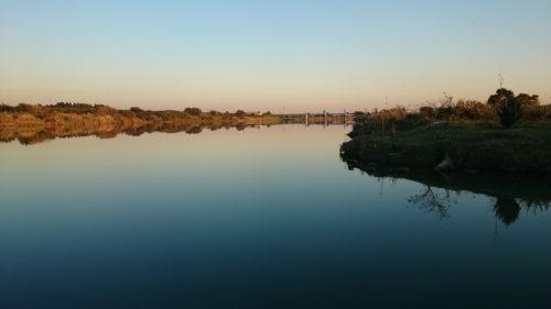 朝霞水門→秋ヶ瀬取水堰+そのちょっと上流へブラックバスを釣りに☆