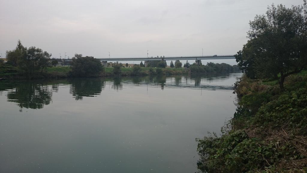 治水橋の下流側