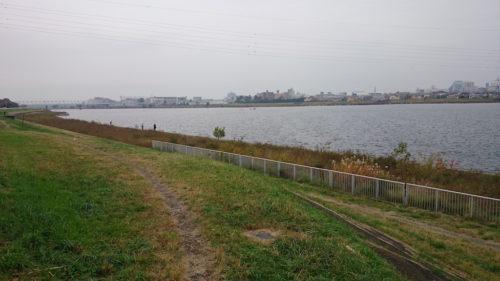 多摩川 登戸〜稲田堤間 ブラックバスフィッシング