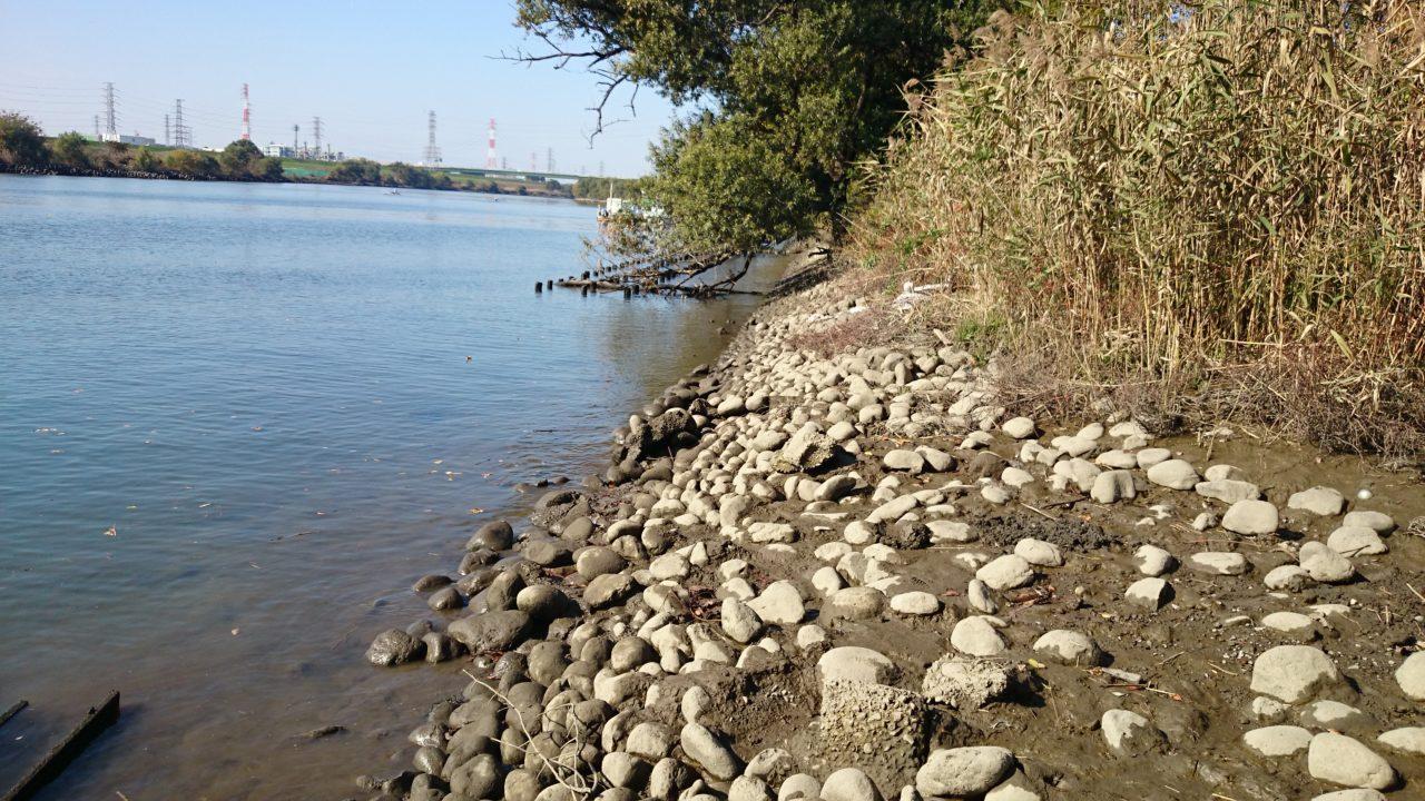 干潮時の笹目橋の少し上流側2