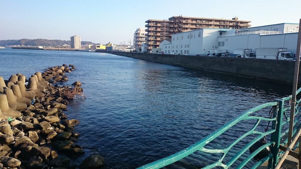 横須賀の海辺つり公園へ釣り納め。ロックフィッシュ狙い!写真1