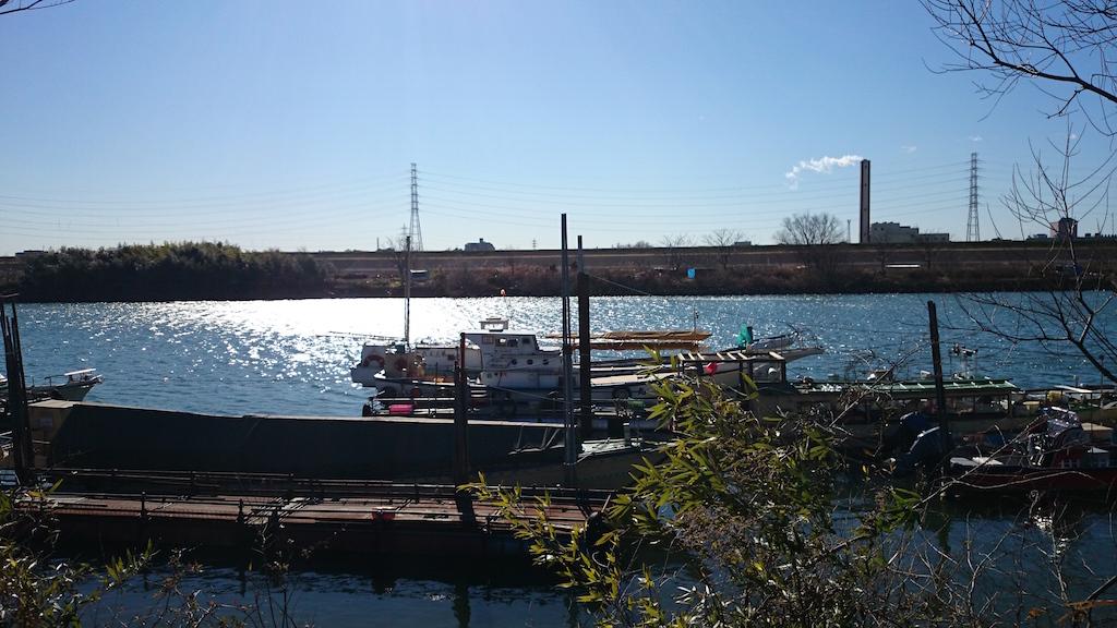 2015年初釣行!荒川の笹目橋付近にブラックバスを釣りに行ってきました。_5
