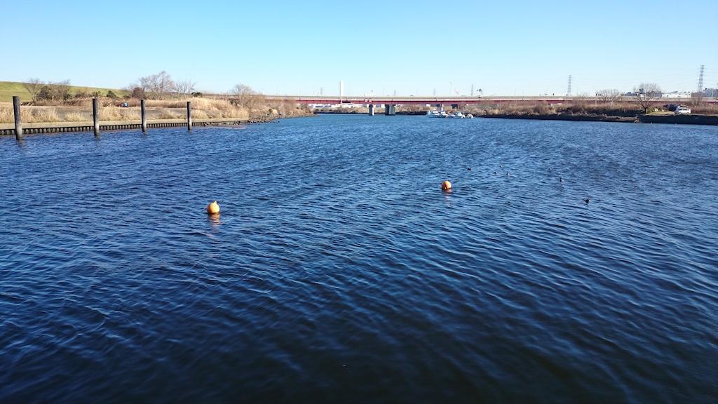 2015年初釣行!荒川の笹目橋付近にブラックバスを釣りに行ってきました。_1