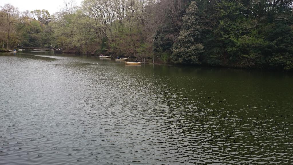 震生湖にバスと自然を求めて!森林に囲まれて癒される釣り場です♪_2