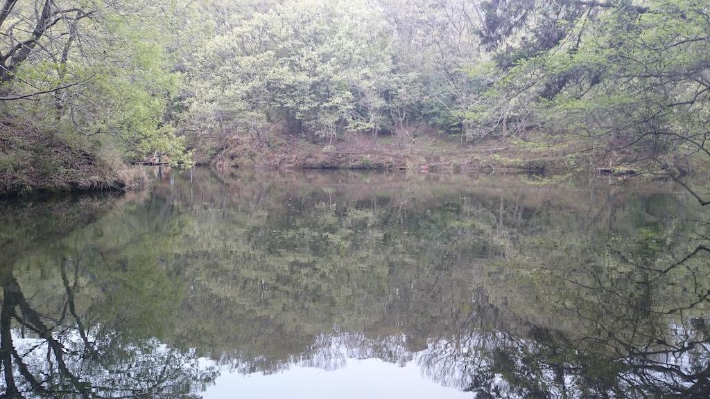 震生湖にバスと自然を求めて!森林に囲まれて癒される釣り場です♪_4