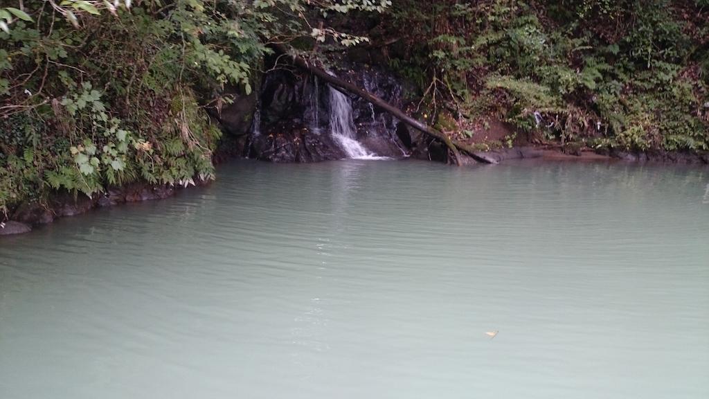 雨の影響で濁り気味の相模湖にて大物ブラックバス狙い☆5