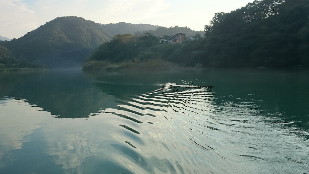 雨の影響で濁り気味の相模湖にて大物ブラックバス狙い☆11