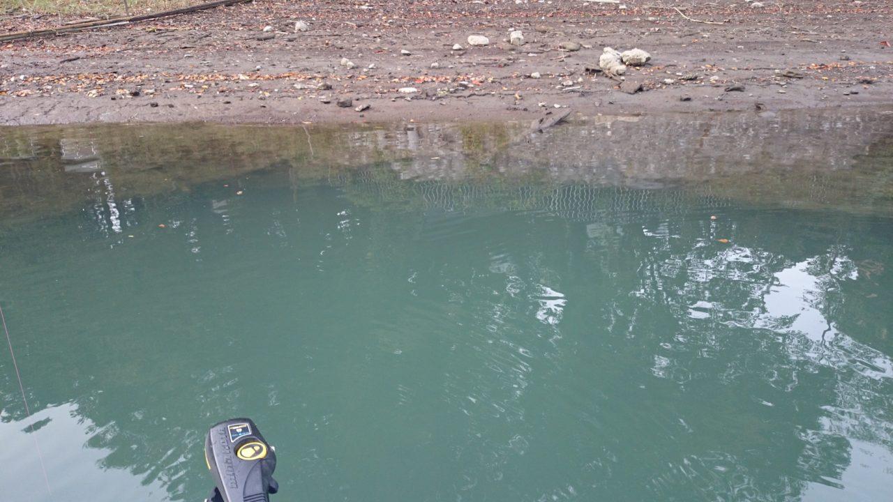 秋晴れ!11月の相模湖にてブラックバス!ただいま減水中で釣りやすいです☆