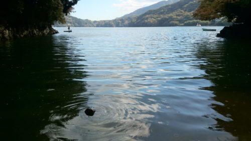 秋深まる11月の相模湖☆紅葉&バスフィッシング!なかなか釣れない・・・