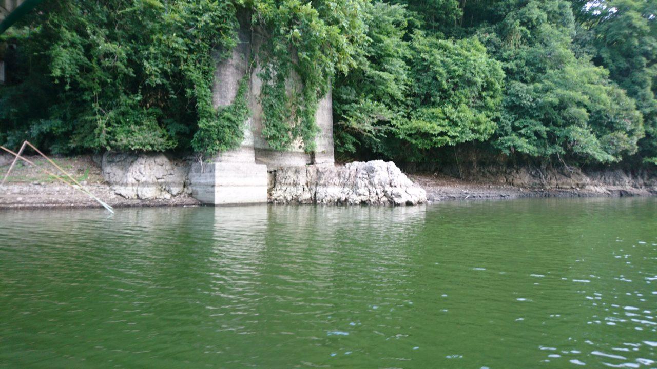 【大減水の相模湖】小バスの数釣りはできますが・・・