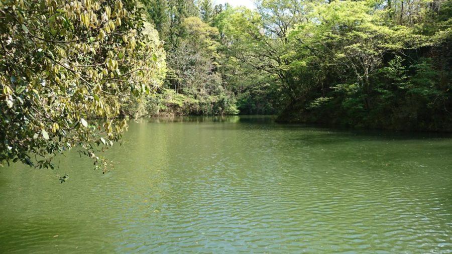 【本年の相模湖初魚!】代休を利用して相模湖に行ってきました★