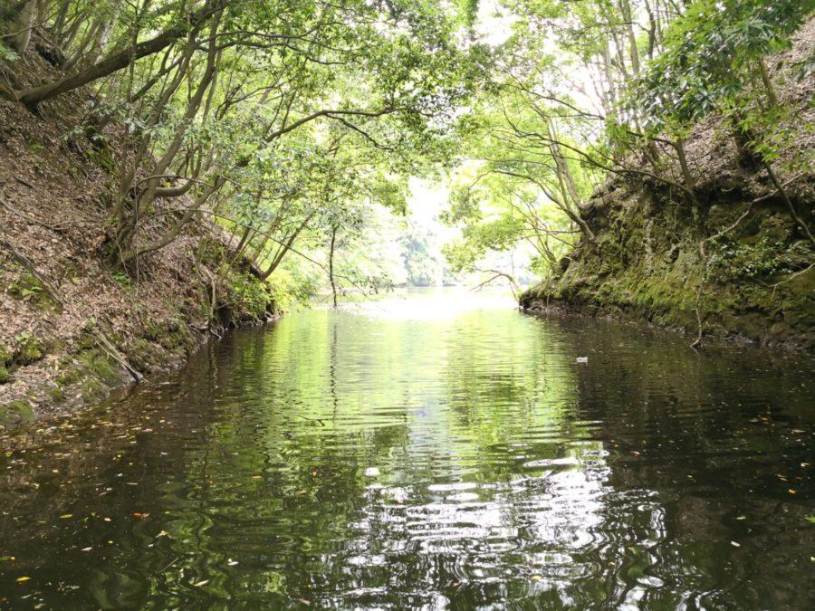 【三島湖へバスフィッシング】初場所!レンタルボートを借りて1日満喫♪