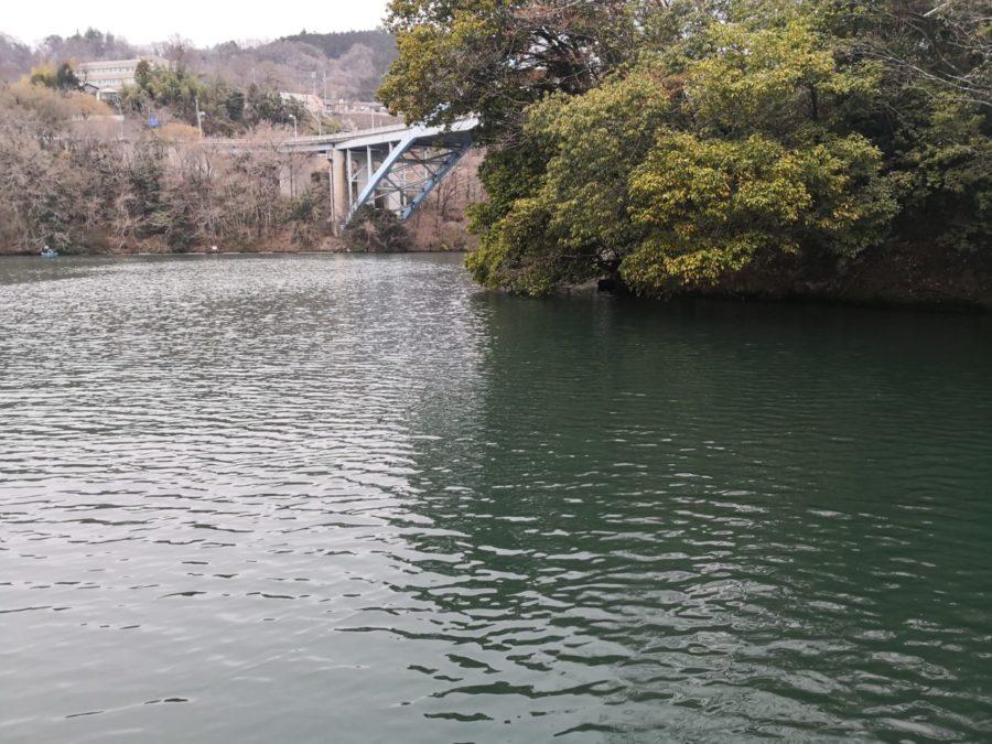 WSC63MHとフットボールジグで春の相模湖