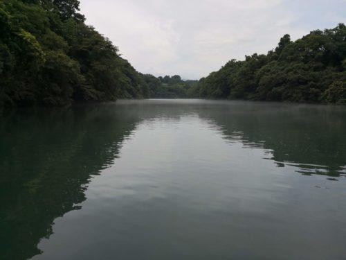 相模湖 冷たい水