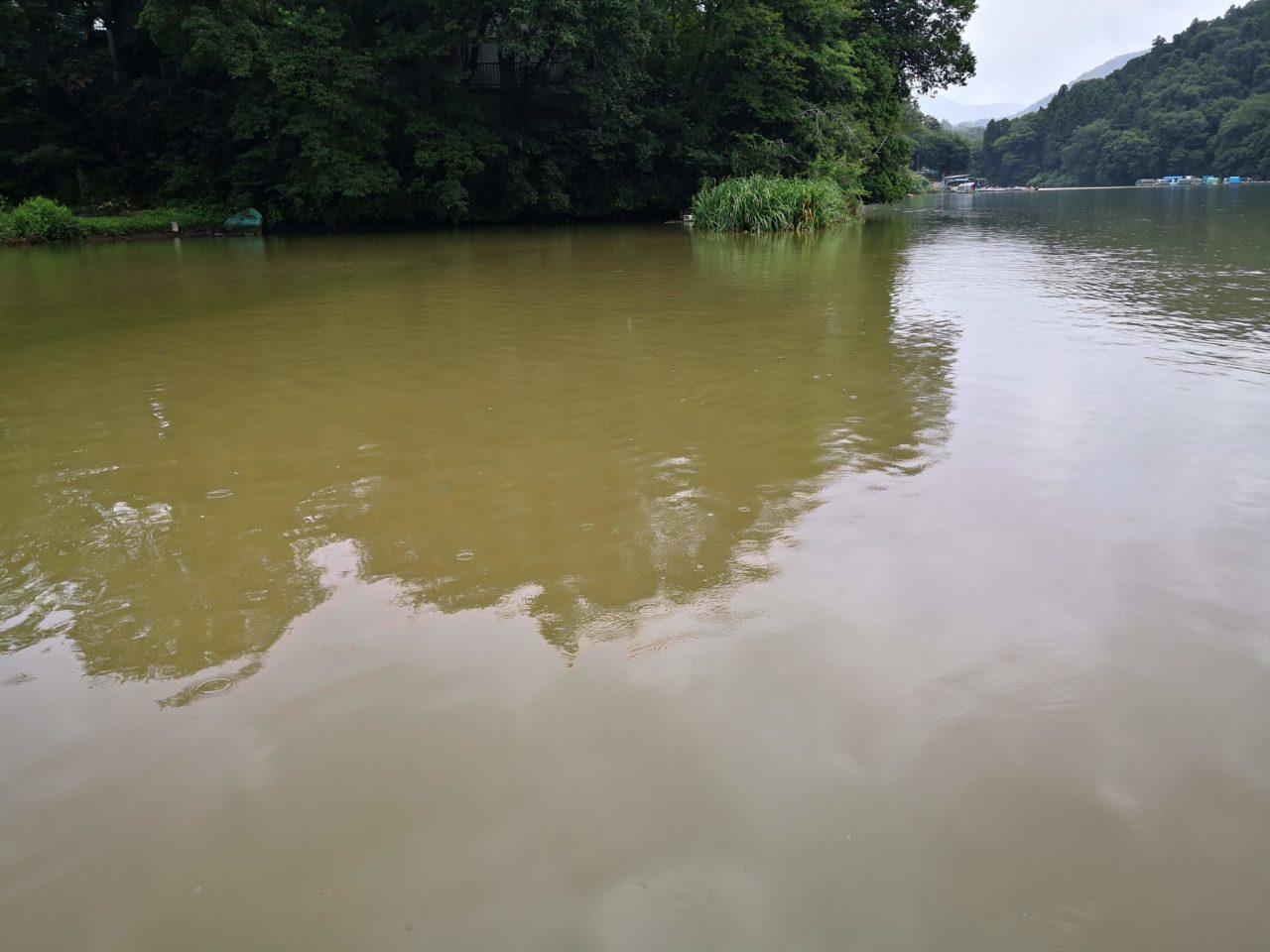 【2019年8月15日】相模湖でブラックバスな夏休み